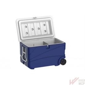 Glacière de 65 litres avec séparateur